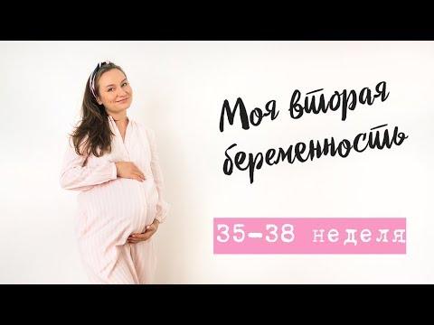 38 недель беременности