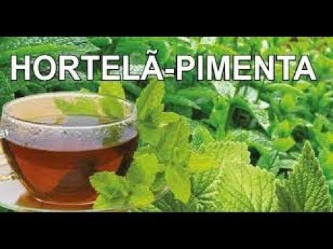 hortelÃ-pimenta/seus-benefÍcios/nÃo-pode-faltar-na-sua-casa