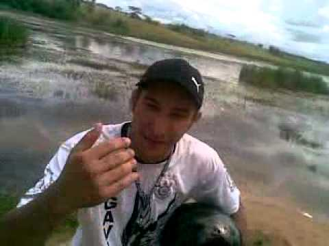 01(Reporte,kiko, Entrevista  piloto,mt cross Bruno souza.mp4 Videos De Viajes