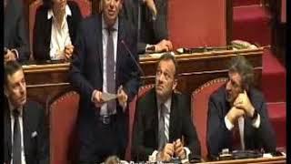 Intervento del Senatore Daniele Manca (Pd)