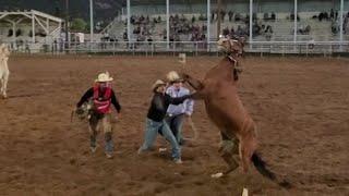 WILD HORSE RACE 2020 EAGAR, AZ YouTube Videos