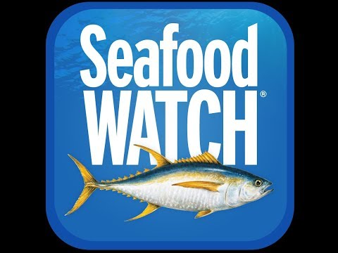 The Health Edge: Seafood Watch