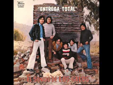 LOS GALOS -  ENTREGA TOTAL 1973 ( DISCO COMPLETO )