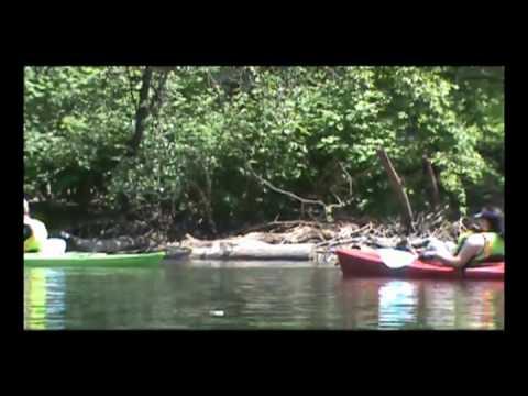 Bronx River Alliance Part II