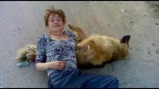 Женщина хочет собаку