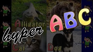 The ABCs gone hyper!! Both kids and English learners can have fun l...
