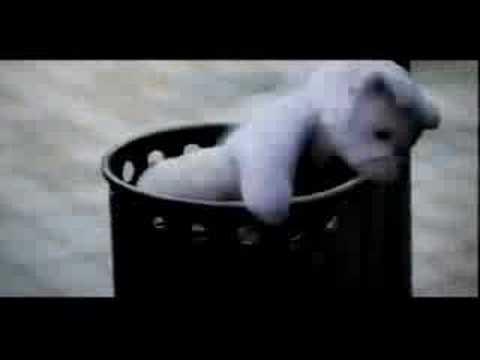CLARA HILL - Silent Distance (Official Video)
