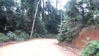 Street View im Dschungel: Ko Phangan Fahrt in den Norden der Insel