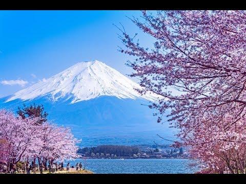 Видео йокогаму порт как отдыхают японцы