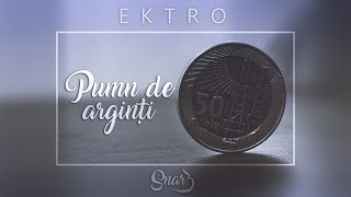Ektro - Pumn De Arginti (prod. Snar3)