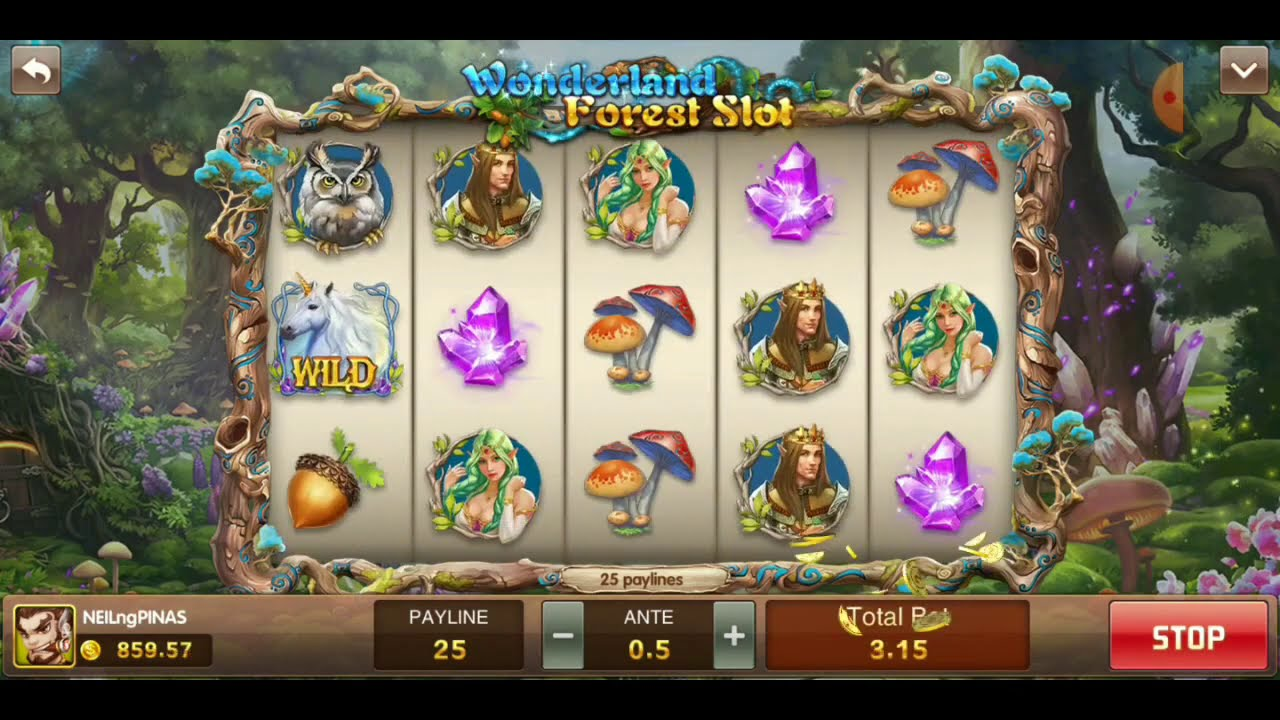 Video Slots Tricks