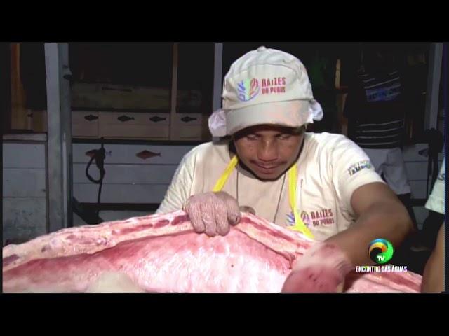REPÓRTER AMAZONAS - MANEJO PIRARUCU - 27.01.2020