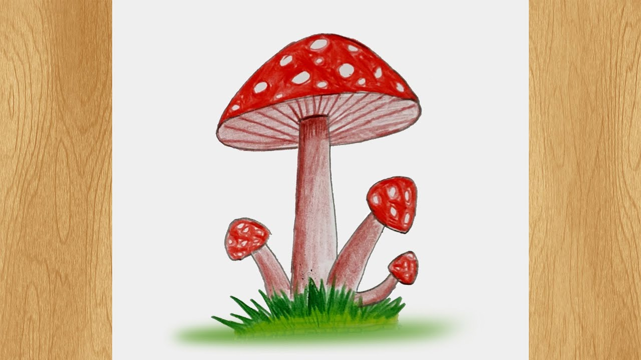 Draw a Mushroom I Mushroom Drawing Tutorial