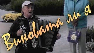 �������� ���� Виновата ли я (русская народная песня из репертуара Надежды Кадышевой). Концерт «Песни под баян» ������