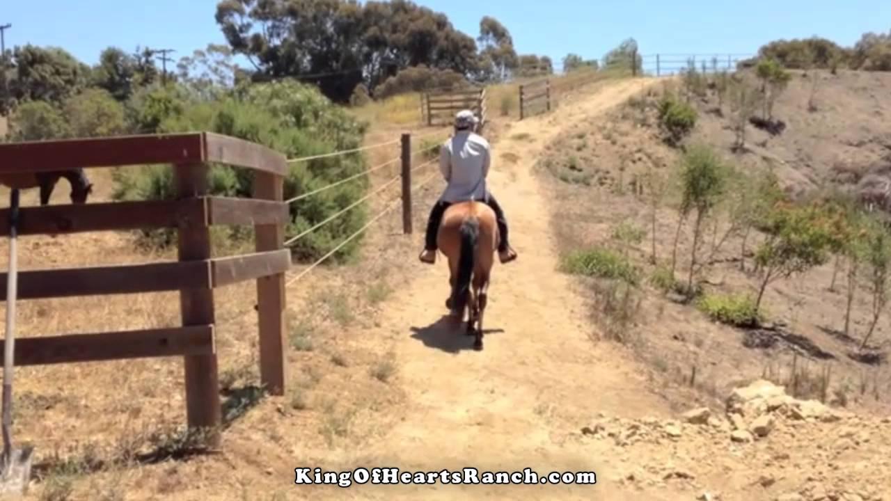 Sailing Malibu Horseback In Santa Monica Mountains Youtube