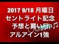 【競馬予想】2017 9/18 月曜日 セントライト記念 予想と買い目