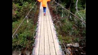 Kids Walking Across Suspension Bridge