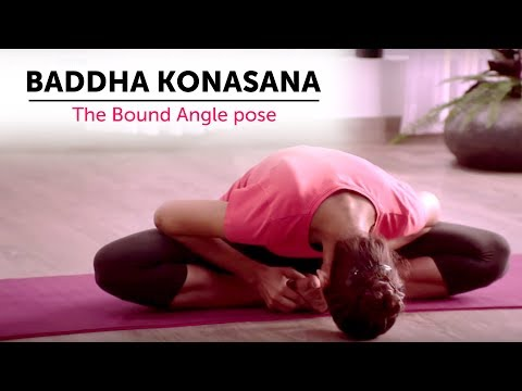 Baddha Konasana | The Bound Angle pose | Steps | Yogic Fitness