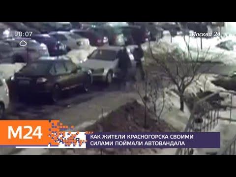 Как жители Красногорска своими силами поймали авто-вандала - Москва 24