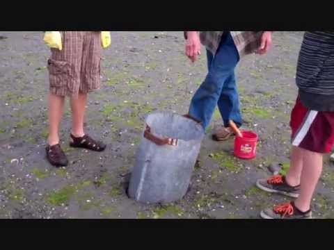 Hunting the Geoduck.wmv - YouTube