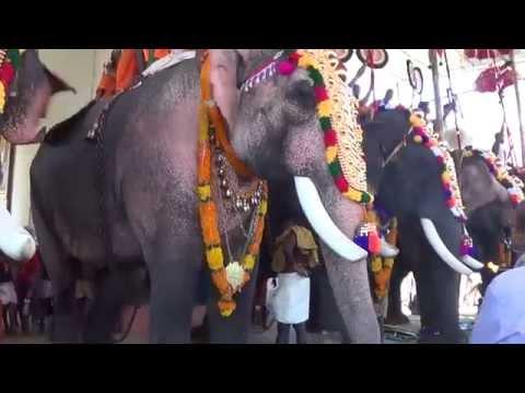 Kuttankulangara Arjunan at Uthralikavu Temple Pooram