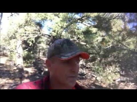 Sasquatch burial