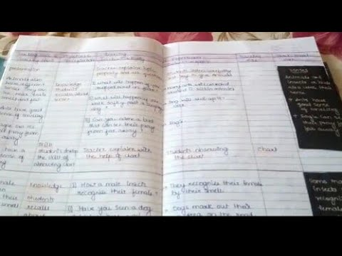 Evs lesson plan/ how to make lesson plan/lesson plan format/how to