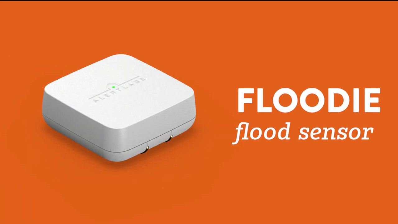 Edgecom Energy's Partnership with Alert Labs for Smart Flood Detection.