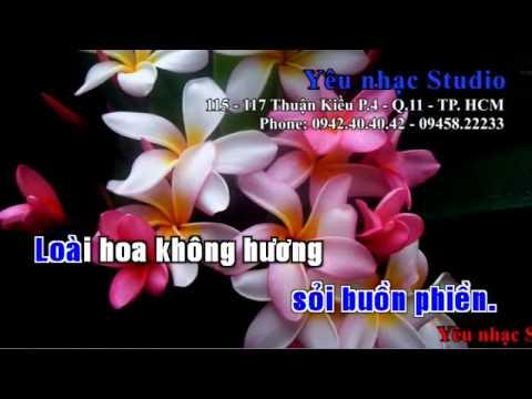 KARAOKE LK Chuyện Hẹn Hò   Hoa Trinh Nữ   Mạnh Đình ft Châu Tuấn