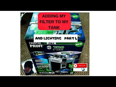 ADDING MY FILTER TO MY FISH TANK AND LIGHTING PART 4