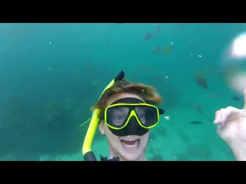 Post-Grad Southeast Asia Adventure
