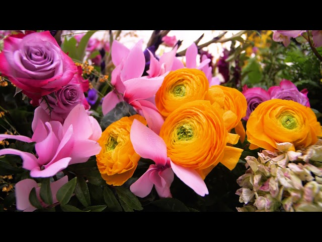 Macy's Flower Show Returns with a Floral Celebration of Fortitude!