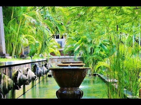 60 minutes sound recorded in Bali island's wild jungle