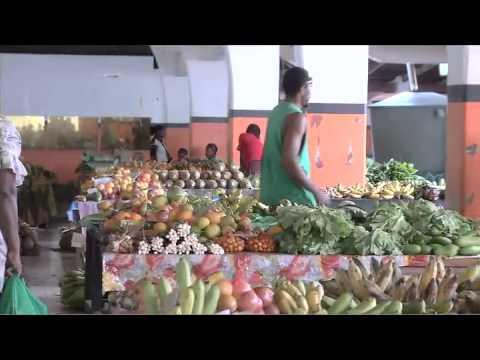 VANUATU LAND SALE - $25,000 PER LOT - V 1