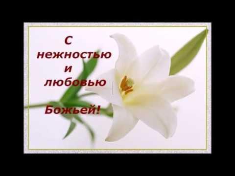 С ДНЕМ РОЖДЕНИЯ  55 лет