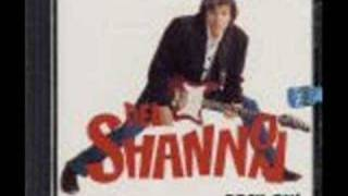 Del Shannon - So long baby w/ LYRICS