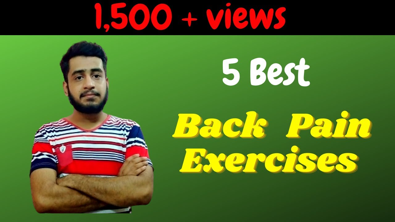 20 Best Exercises for Lower Back Pain   Mckenzie exercise Back pain in Hindi  / urdu Physio Mentor