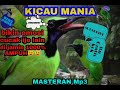 New Masteran Cucak Ijo Juara Full Tembakan  Mp3 - Mp4 Download