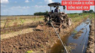Các chú từ thiện thuốc nam làm đất chuẩn bị trồng mùa nghệ mới.