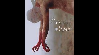 Blake Dorner's Artistic Vision for Crisped + Sere