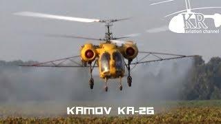 Kamov Ka-26 spraying sunflower near Pálmonostora
