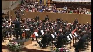 Banda Simfònica Unió Musical de Lliria - CIBM Ciudad de Valencia 2013 - NBM.COM