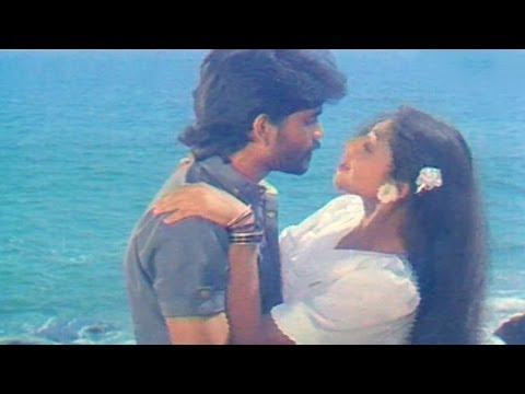 Vikram Movie Songs - Neevele Na Pranam - #AkkineniNagarjuna, Shobana, Annapoorna