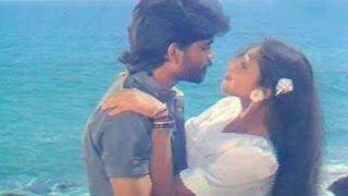 Vikram Movie Songs - Neevele Na Pranam - Nagarjuna Akkineni, Shobana, Annapoorna