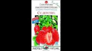 Семена клубники оптом(, 2013-05-06T13:08:43.000Z)