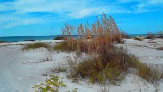 № 1337 США Как снять гостиницу Флорида Lido beach Fl Америка