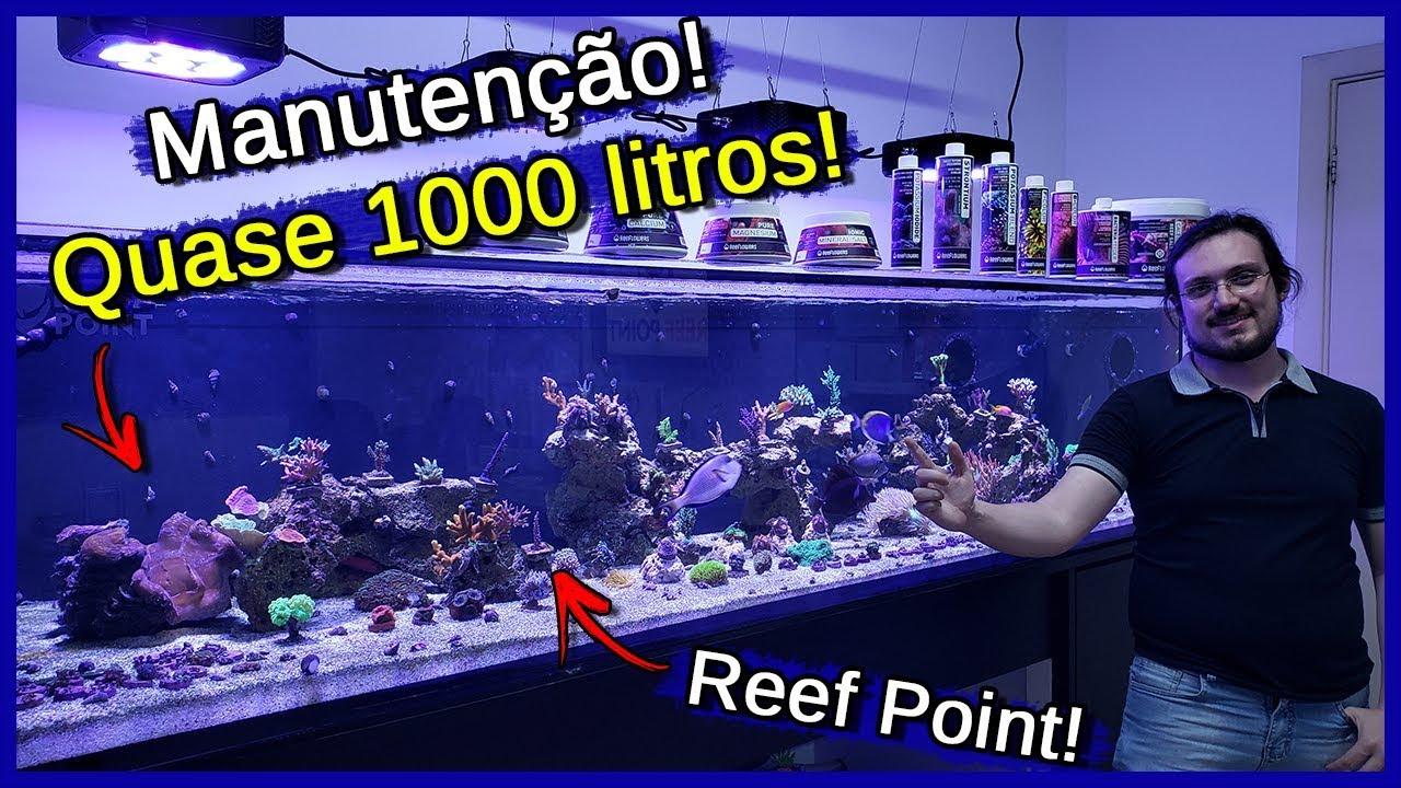 Manutenção de um Aquário Marinho de 800 LITROS!