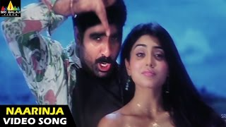 Bhageeratha Songs | Naarinja Pulupu Video Song | Ravi Teja, Shriya | Sri Balaji Video