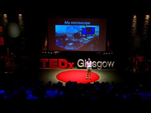 The Immune System: Looking for Love in All the Right Places | Jim Brewer | TEDxGlasgow