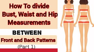 How To Divide Bขst Waist and Hip Measurement.(Part 1.)